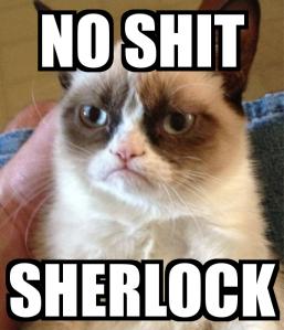 no-shit-sherlock-3