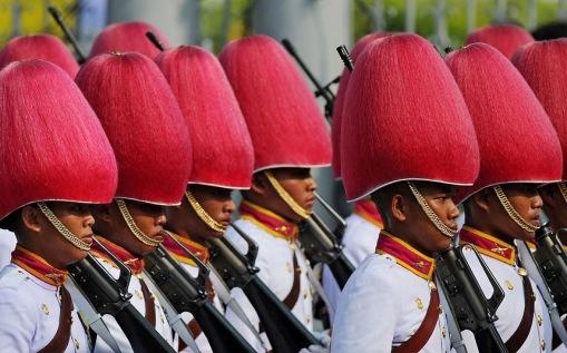 pink-helmets_2418825k