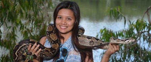 billabong-pythons